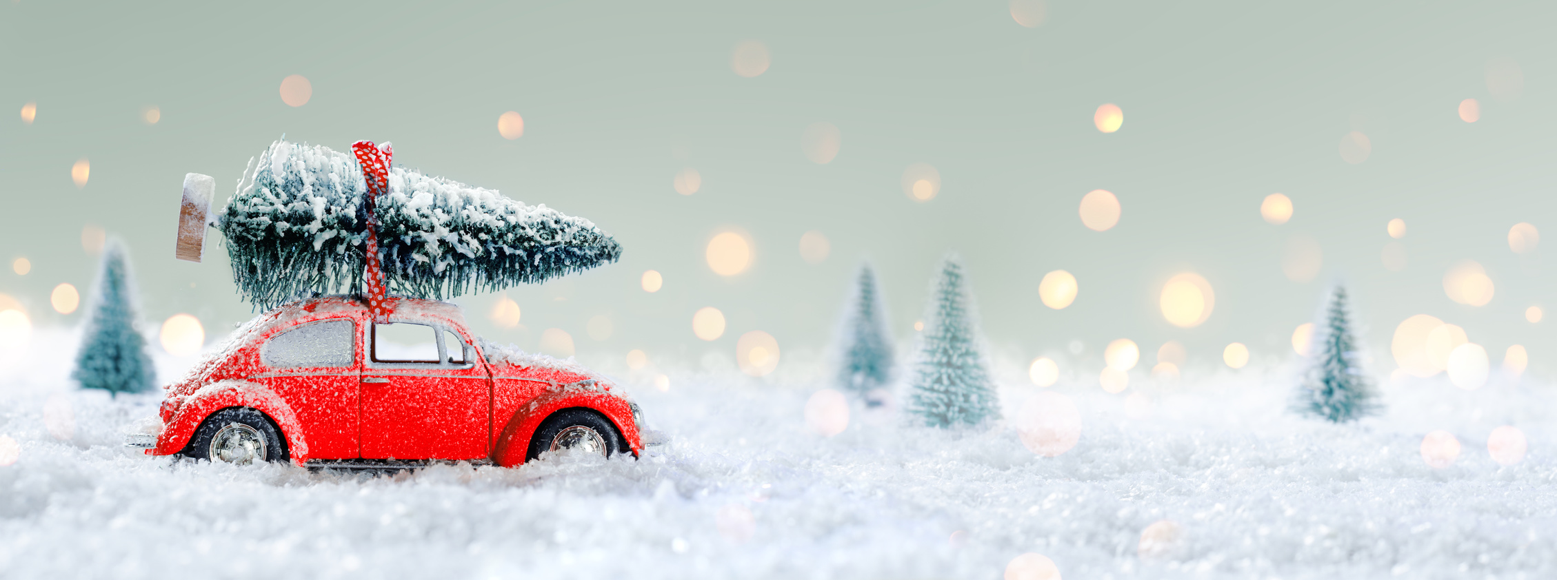 A red car carries a tree through snow.